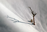 The Slow Dance of Snow and Shadow