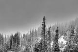 Ridge Top Fog