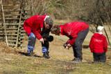 Roffe & Ewa spanar in skalbaggarnas parningslekar