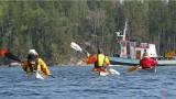 En bogserbåt korsade vår väg, annars lugnt på sjön.