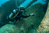 Diver on the propeller of the Wreck of the Rhone