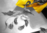 Dried Petals and Yellow Foil