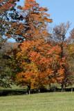 Fall 2007-2