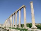 The Cardo Colonnaded Street 14 Jerash Jordan.jpg