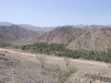 Green Oasis Wadi Hayl Fujairah.JPG