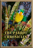 Parrot Chronicles
