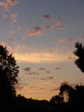 Sundown Silhouette