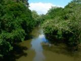 Puerto Viejo River
