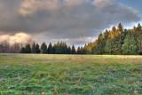 The Pasture-2 *.jpg