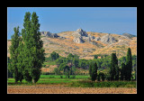 Alpilles - Provence 4