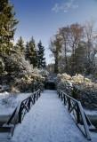 Séta a téli arborétumban - Stroll in the wintery botanical garden