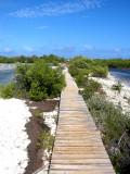 Boardwalk along the Lagoon