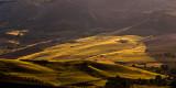 Golden fields, south of Ronda
