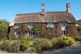 Thatched house, Melbury Osmond, Dorset (4684)