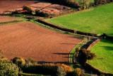 Brown field and barn, South Cadbury