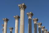 National Arboretum, US Capitol columns
