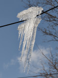 Ice creature?