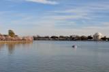 Cherry Blossom Festival on the Tidal Basin