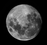 Lunar Phase Shots
