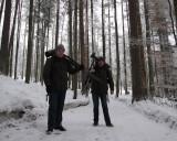 Bayerse Wald