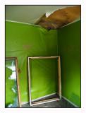New demolition subject # 3