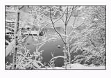 Heavy snow 3