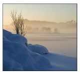 Winter wonderland # 2