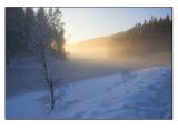 Winter wonderland # 5