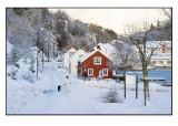 Winter wonderland # 6