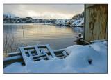 Winter wonderland # 7