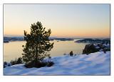Winter wonderland # 9