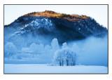 Winter wonderland # 22