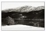 Winter wonderland # 31