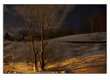 Night view  # 10