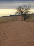 Eastern Montana Road ( Miles And Miles To Our Hunting Area..)