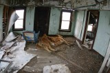 Inside Abandoned Farm House ( Dead Cow)
