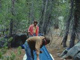 Canadians Setting Up Their Sierra Designs Glacier Tent At Mono Hot Springs