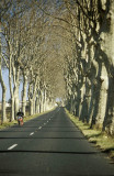 Country road, Herault