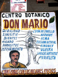 Herbalist store in El Fuerte