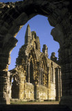 Whitby Abbey, North Yorks.
