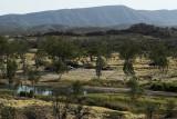 Two Mile Waterhole, Finke River