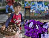 Discovering El Salvador