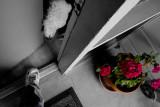 March 25th - In The Door