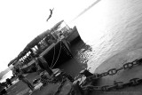 At the Hooghly River