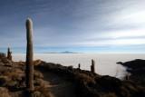 Isla del Pescado, Salar d'Uyuni
