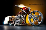 Custom Bagger_2010