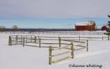 Skaneateles Farm