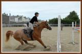 Equitation - Berck - Aout 2008