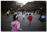 20081219 -- 232734 -- Canon 5D + 50 / 1.2L @ f/1.2, 1/250, ISO 400