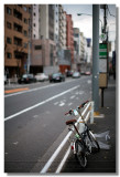 20081220 -- 202422 -- Canon 5D + 50 / 1.2L @ f/1.2, 1/1600, ISO 100